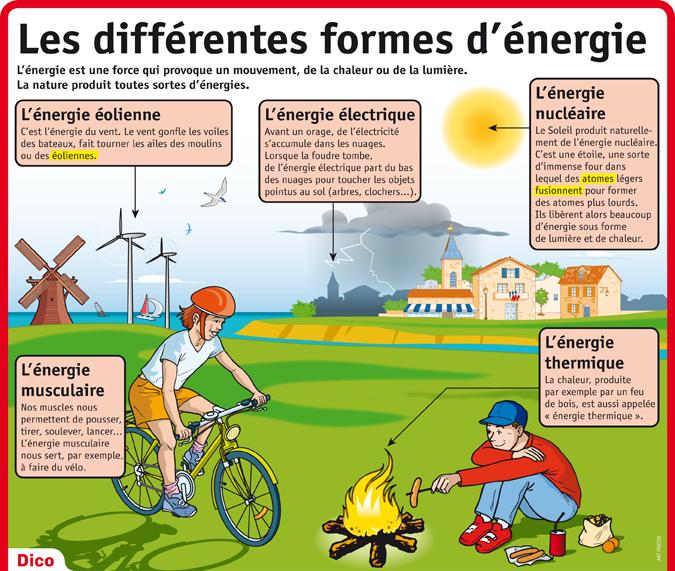 ecologie 9.jpeg